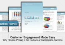 Cerillion survey finds two-thirds of businesses unhappy with current pricing and payment processes