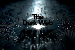 Wannabe fraudsters can buy hacking tools on dark web for cost of cup of coffee