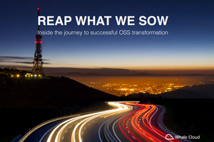 Reap what we sow: Whale Cloud report maps journey to successful digital transformation
