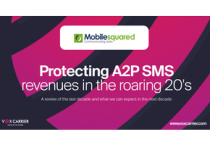 Revenue leakages of US$37.1bn forecast between 2020-'24 on SMS grey routes