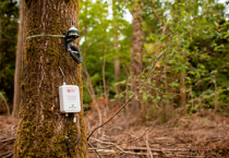 Rising demand sees Vodafone expand narrowband IoT coverage to reach 98% of UK geography